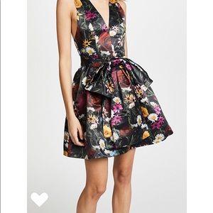 Alice + Olivia Formal Dress Size 10